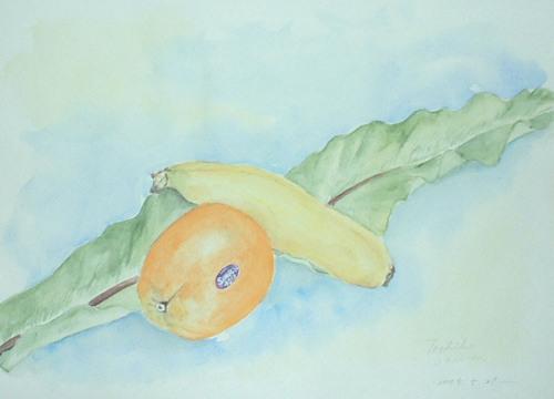 126 オレンジ・バナナ・タニワタリ