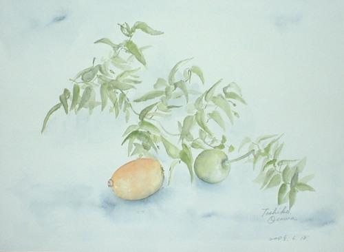 130 スマイラックス・枇杷・姫リンゴ