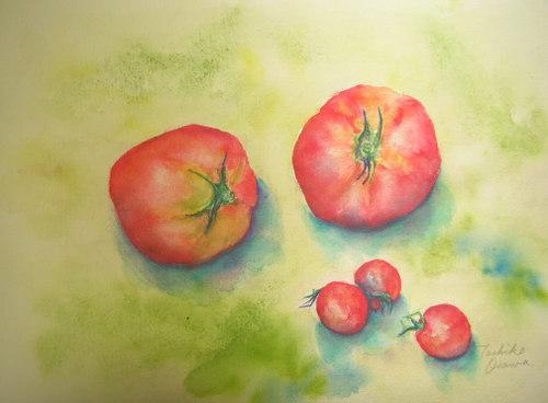 178 大きいトマトとプチトマト