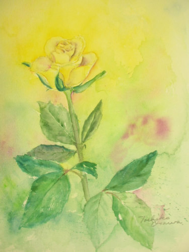 235 黄色い薔薇ーその2-