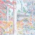 20 金剛輪寺の楓